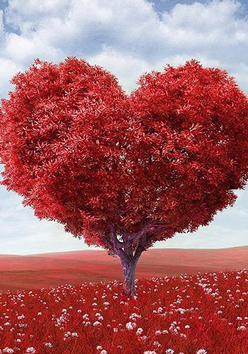 Return Lost Love Spells